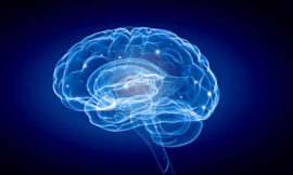 Science image with human brain on blue background.